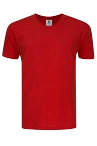 Short Sleeve Round Neck Red