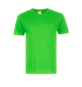 Foursquare RoundNeck T-Shirt (160gsm) -Apple Green