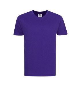 Foursquare RoundNeck T-Shirt (160gsm) -Purple